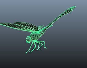 dragon fly 3d model rigging ready model with no