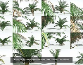EVERYPlant Seashore Palm Bundle --168 Models--