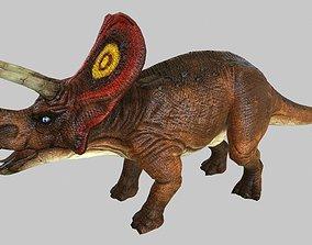 Triceratop 3D asset