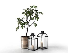 Lanterns and Planter with Fig Tree fig 3D