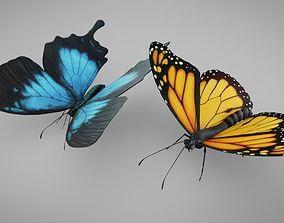 3D asset Butterflies