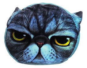 Pillow with Painted Cat Face 3D