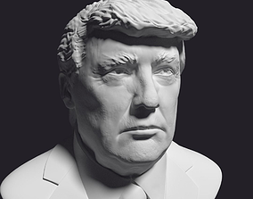 Donald Trump printable bust