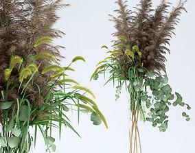 3D model Pennisetum and Pampas grass with Eucalyptus