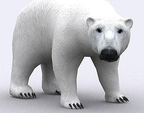 3DRT - Polar Bear animated low-poly