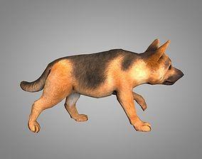 3D asset animated Shepherd
