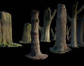 10 Photo Scanned Tree Trunks 3D