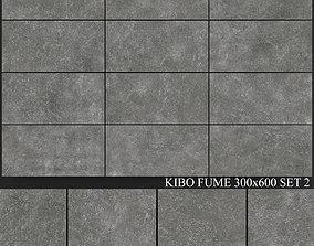 Yurtbay Seramik Kibo Fume 300x600 Set 3D model