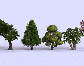 3D asset Garden Tree