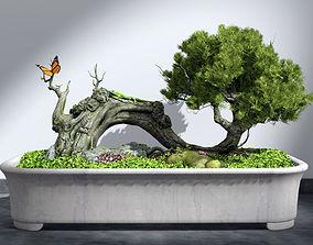 bonsai plant 3D pot