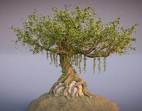 3D model Fantasy Old tree
